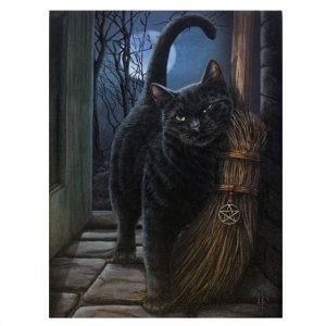 19x25cm Brush With Magick Canvas Plaque by Lisa Parker