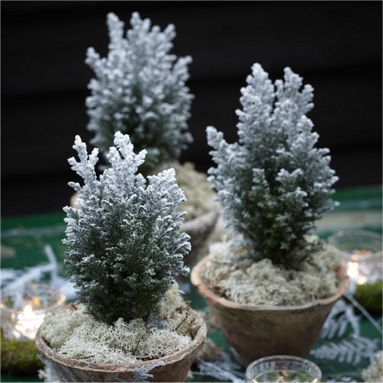 snowy-trees1
