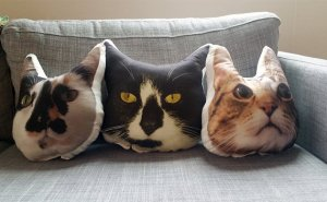 custom cat pillows from aurespaces