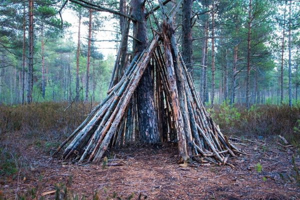 How to Build the Wikiup Shelter
