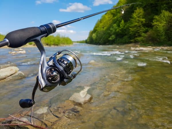 Spinning Reel Explained