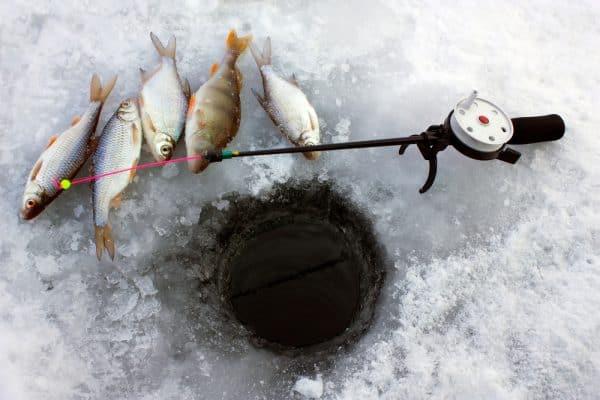 Ice Fishing Style