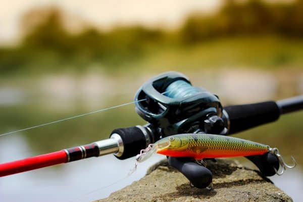 Bass Fishing Reels Buying Guide