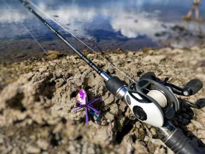 Best Bass Fishing Reels