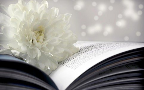 756182-book-wallpaper