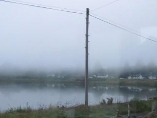 IMG_5607 fog am