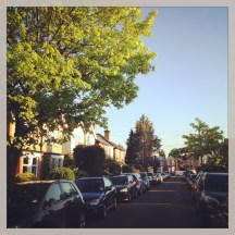 Our lovely street