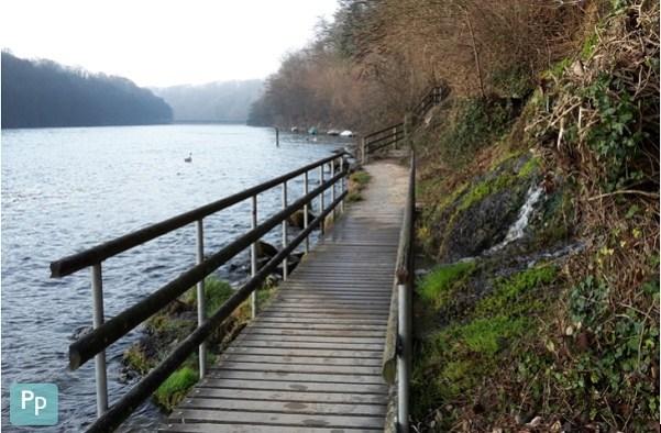 Tolle Laufrunde direkt am Rhein