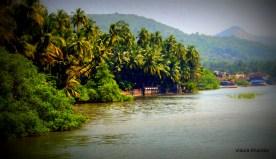 dabhol backwaters