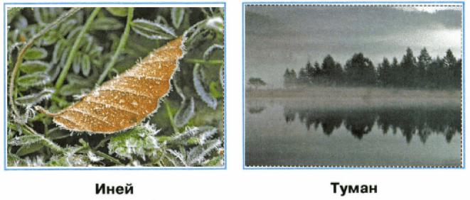 иней и туман картинки