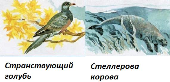исчезнувшие животные