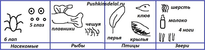 Как изобразить с помощью схематических рисунков главные признаки насекомых, рыб, птиц и зверей