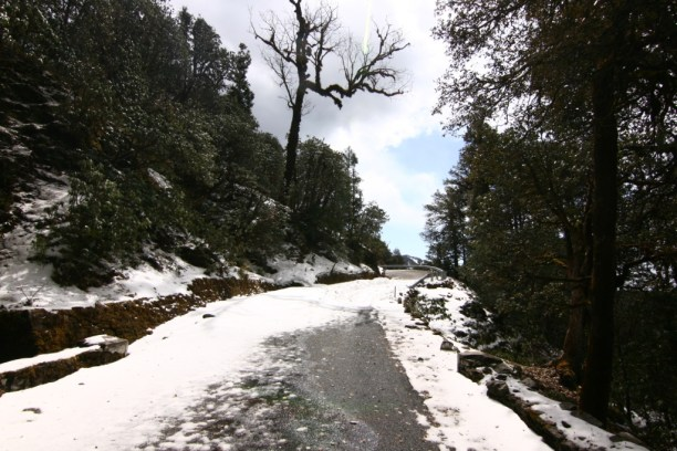 The Chopta snowline