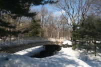 Bow Bridge, Central Park