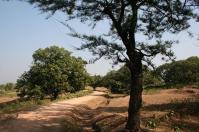 Nice walkway towards Lattu Pahar