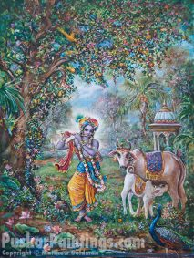 [K55] Krishna appears in Alachua surrounded by cows