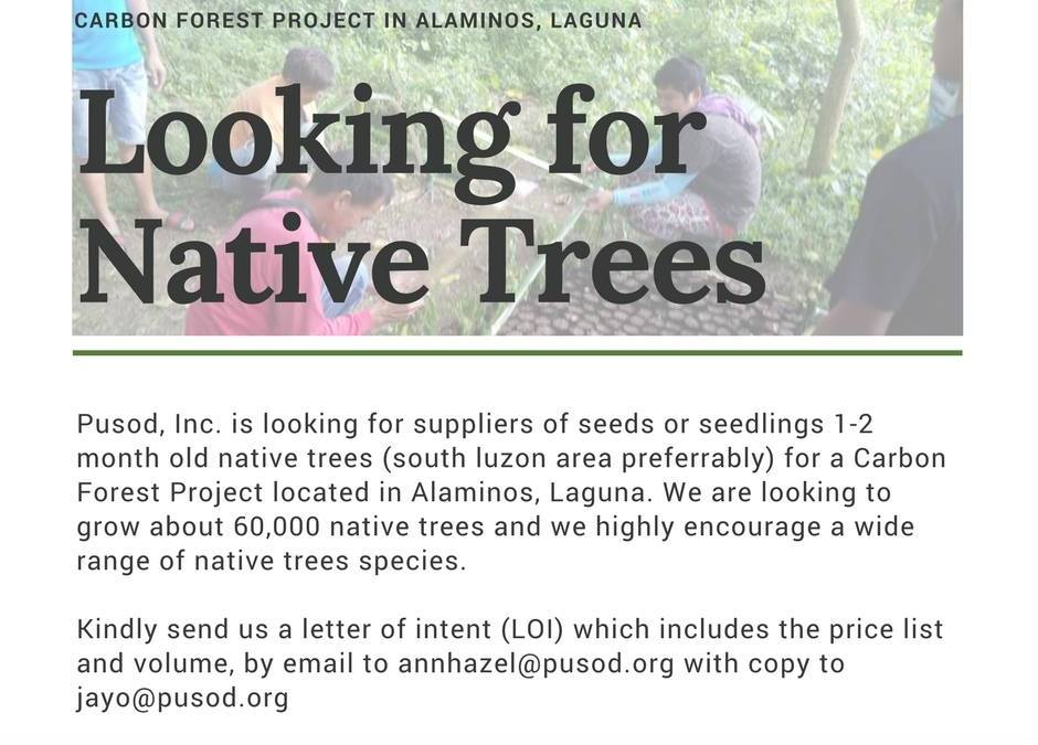 Looking for Native Trees