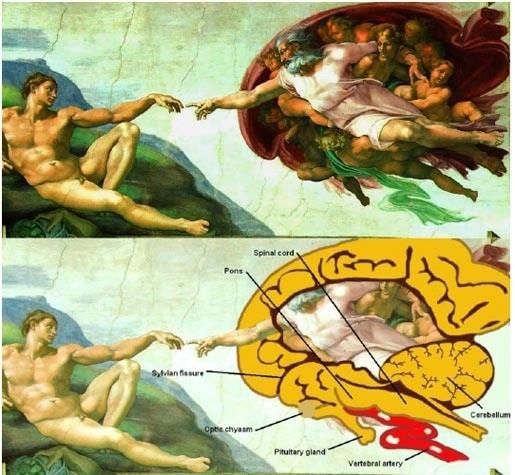 Michelangelo' nun insan beynine atfettiği resmi