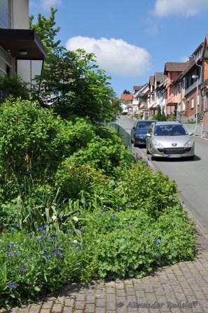 Foto-73d-(54)-Gartenkunst