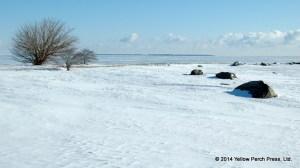 Buckeye Point SBI