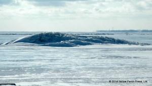 Ice Shove Lake Erie