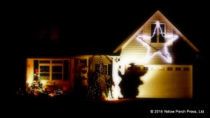 lights_xmas_12092015 (2)