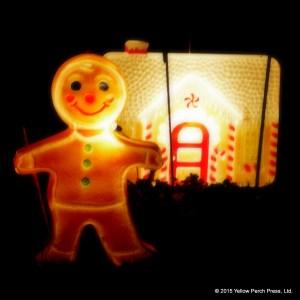 lights_xmas_12092015 (7)