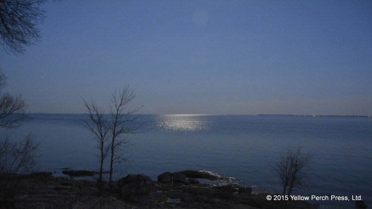 Lake Erie moonlight