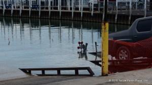 Boat ramp Put in Bay