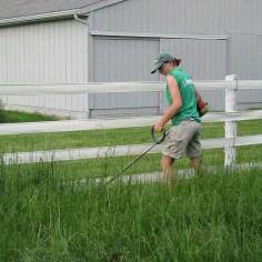 Put in Bay grass cutting