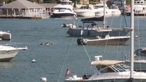 OSU webcam Gibraltar Island