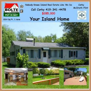 Put in Bay house for sale