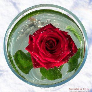 Submerged flower
