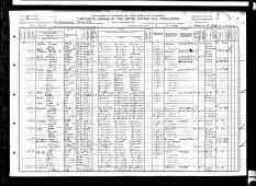 1910 US census Fitzgerald, Ben  Hill County, Georgia