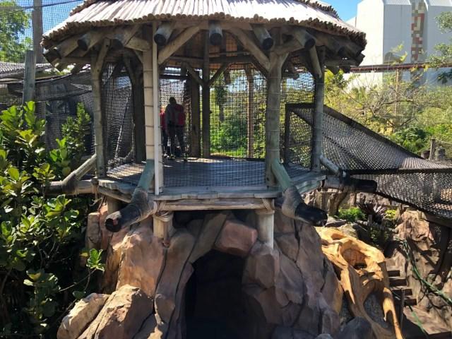 Universal Islands of Adventure Treehouse