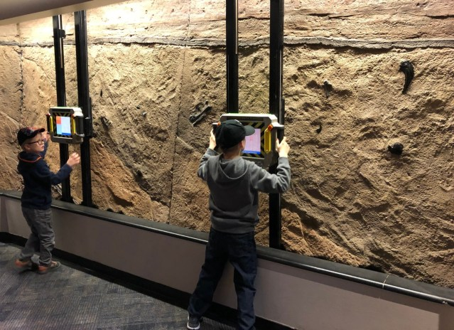 Jurassic Park Discovery Center Fossils