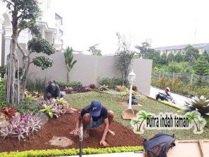 Tukang Taman Pondok Indah