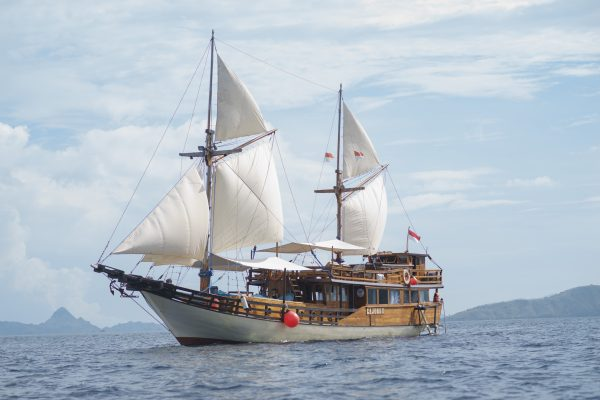 Cajoma Boat III Phinisi