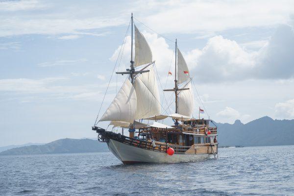 Sewa Kapal Cajoma III Phinisi