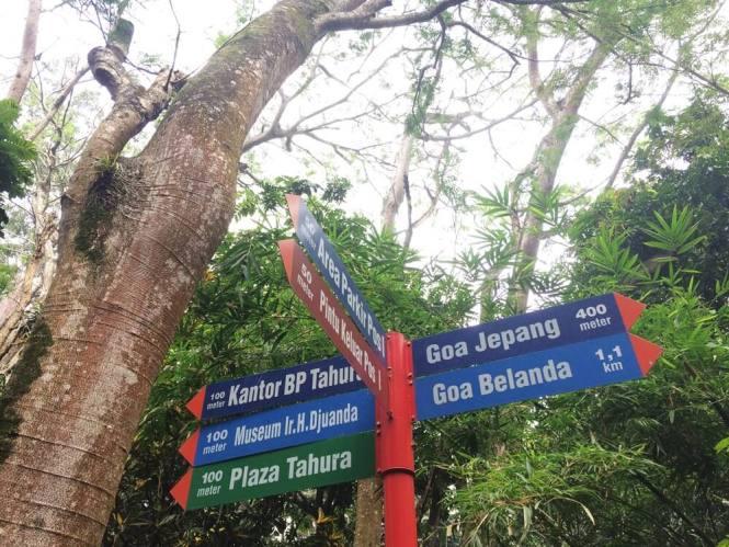 Taman Hutan Raya Bandung
