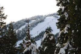 More of Cypress Mountain..and the snow!