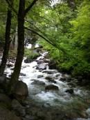 At Shannon Falls
