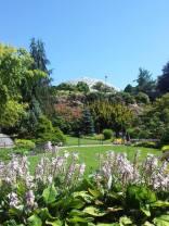 Queen Elizabeth Park gardens