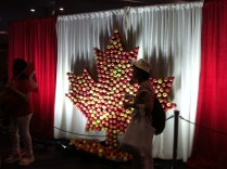 Flag made of apples
