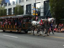 Horse and Carriage!