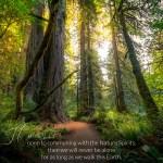 mother nature, shamanic, tree spirits, tree beings, gaia, protector spirits, healing in nature