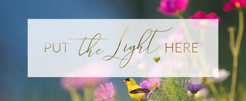 ray hennessy, put the light here, may 2020, ottawa business