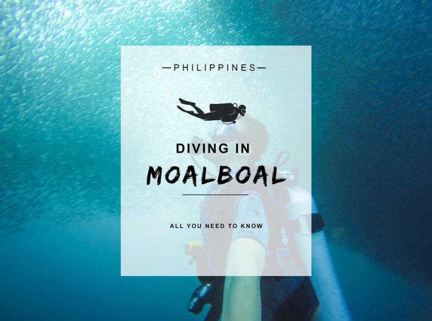Moalboal Header Image