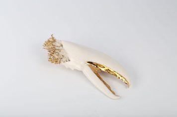 RALUCA BUZURA, LOBSTER, brooch 2019, porcelain, gaze, pigment, gold, natural sponge, steel