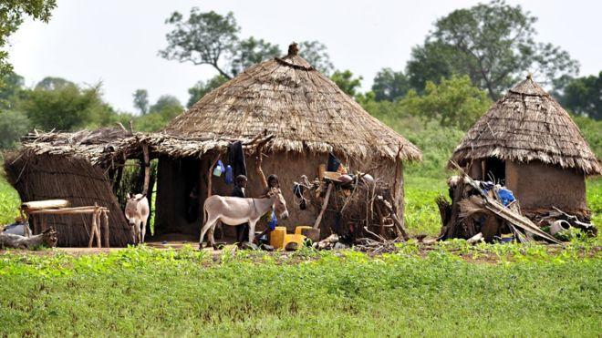Mali, pleme Fula